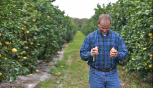 Grove Director, Brian, walks through our Citrus Groves in Vero Beach.